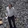 Imagem 5 do filme Terra Firme