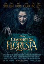 Poster do filme Caminhos da Floresta