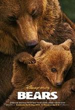 Poster do filme Ursos