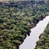 Imagem 6 do filme Amazônia Eterna