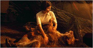 Imagem 4 do filme Eterno Amor