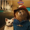 Imagem 5 do filme As Aventuras de Paddington