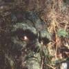 Imagem 11 do filme A Volta do Monstro do Pântano