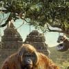 Imagem 2 do filme Mogli - O Menino Lobo