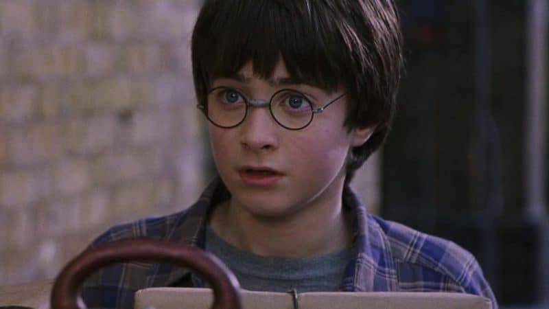 Harry Potter: a biografia do menino que sobreviveu