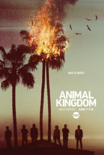 Imagem 1 do filme Animal Kingdom