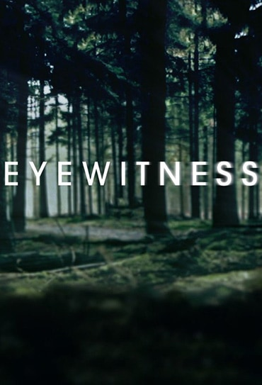 Poster do filme Eyewitness