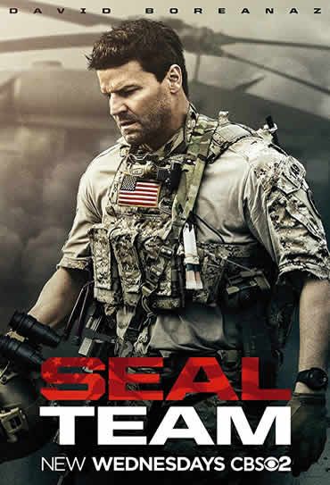 Poster do filme SEAL Team