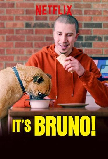 Poster do filme É o Bruno
