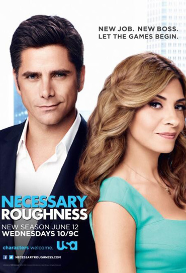 Poster do filme Necessary Roughness