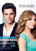 Poster do filme Necessary Roughness